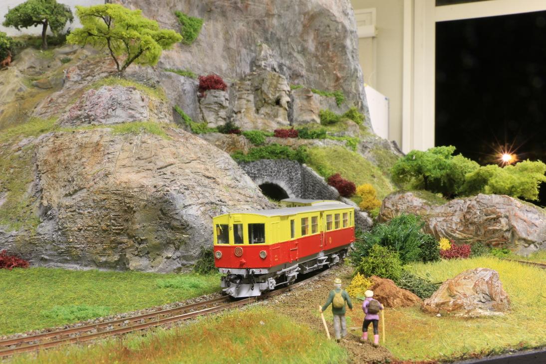 342cr2 trainjaunesaillagouse022 resized